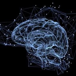 thumbnail-blog-brain-chemistry