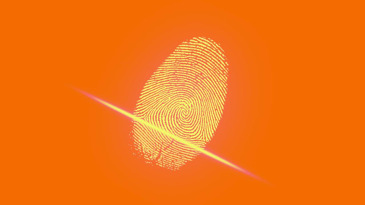 Orange-Fingerprint